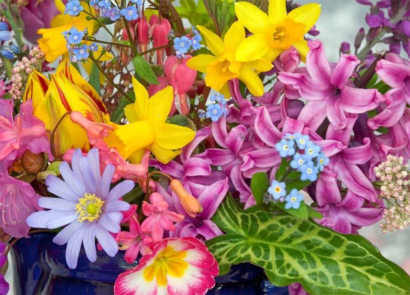 Весенний цветочный аромат